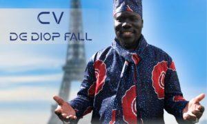 Le CV de Diop Fall